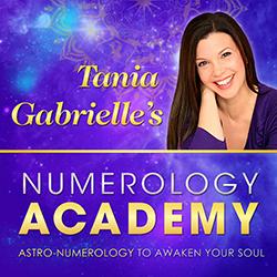 Numerology Academy